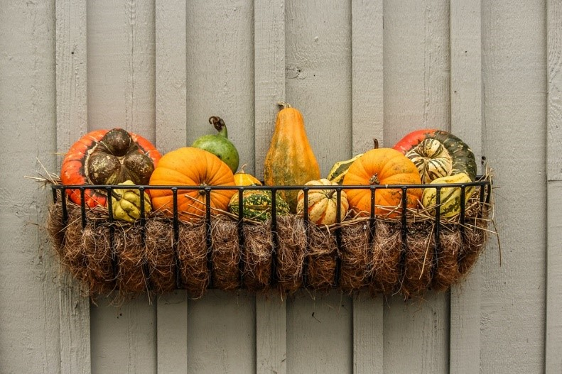 Top 5 Fall Decorating Trends for Homes and Apartments